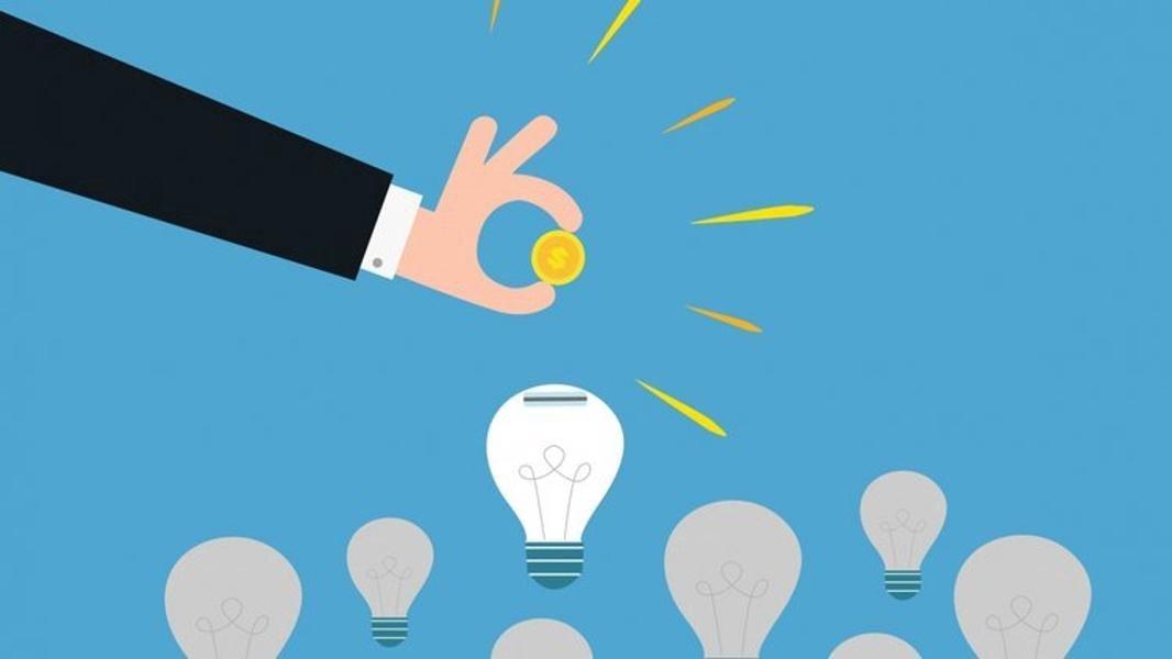 Venture Capital Portfolio Companies consulting & advising