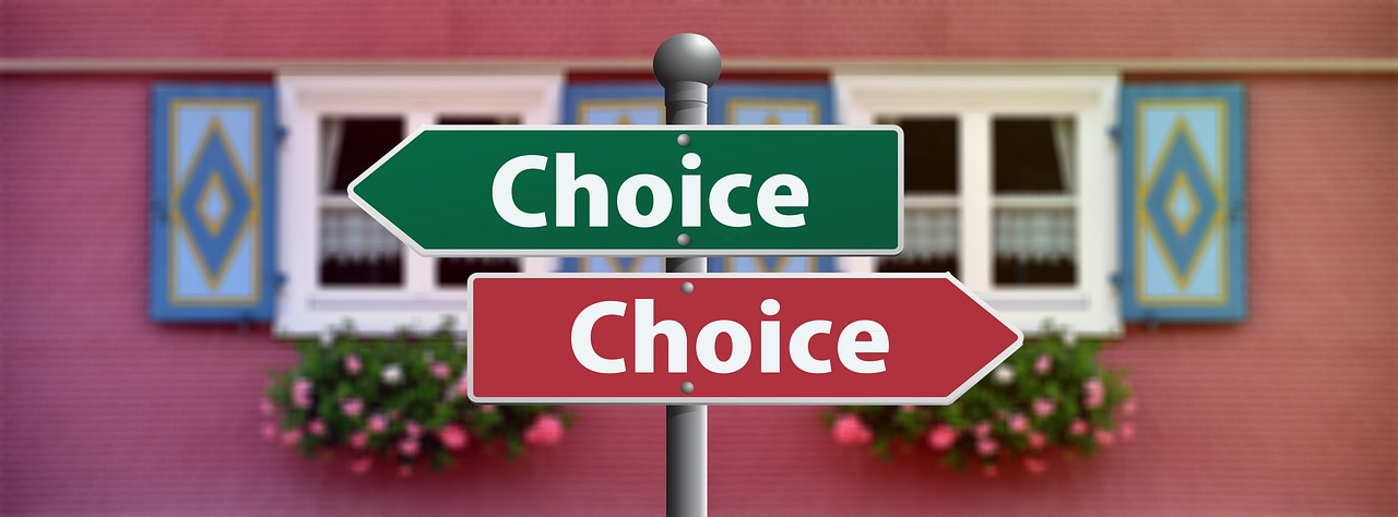 choose between wordpress and shopify